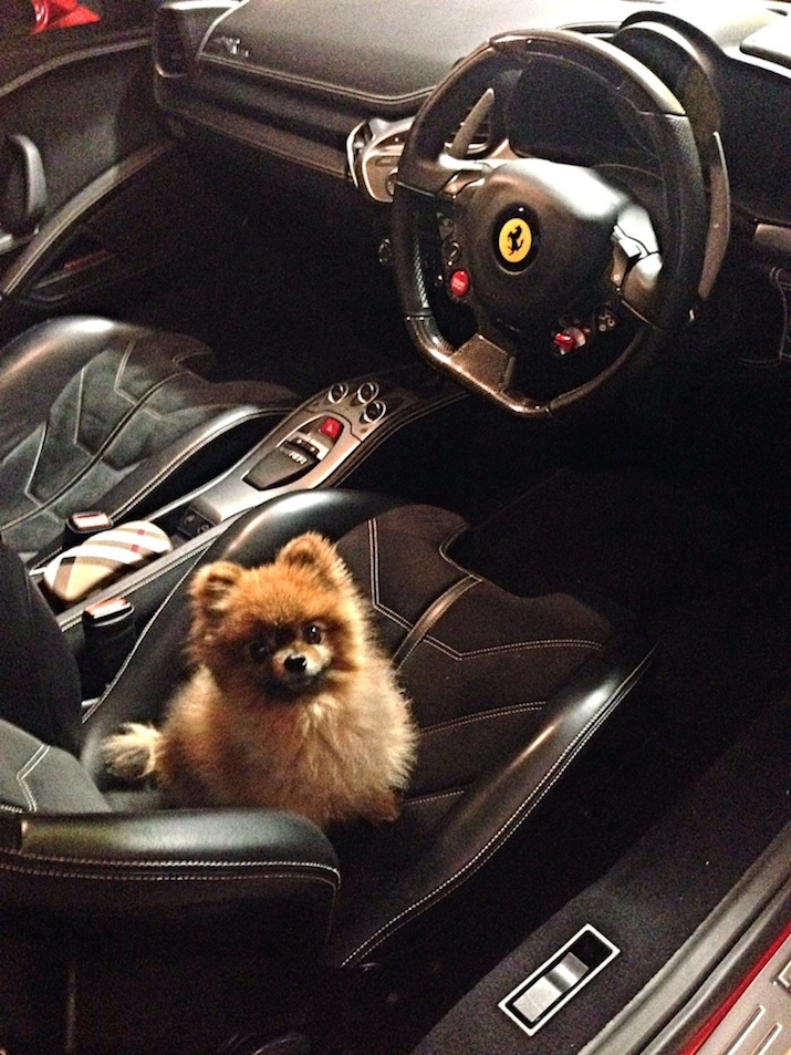 Goochie in the Ferrari 458